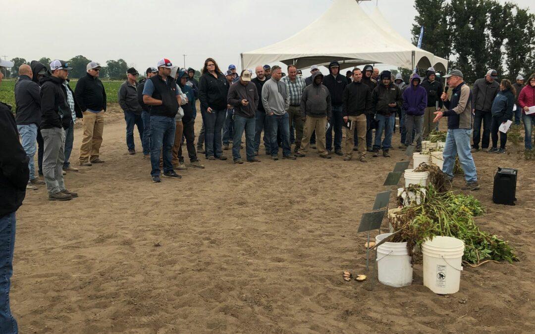 2021 Miller Research Potato Pest Management Field Day